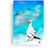 Dove of Peace  Canvas Print