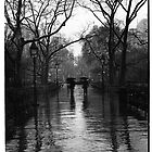 Washington Square Park, Greenwich Village, New York by Will Corder   Photography