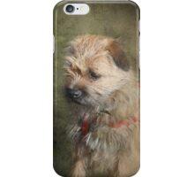 Border Terrier iPhone/iPod Case iPhone Case/Skin