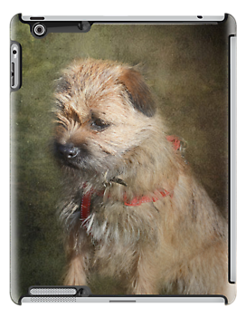 Border Terrier iPad Case by Carol Bleasdale