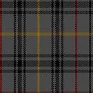 00327 Modowny Tartan Fabric Print Iphone Case by Detnecs2013