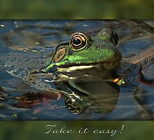 Take it easy! by Linda Pollock