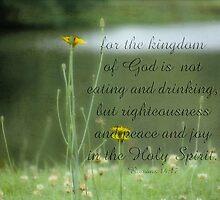 joy in the Holy Spirit-Rom. 14-17 by vigor