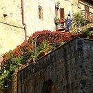 A Roof Garden In San Gimignago by Fara