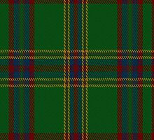 00344 Westmeath District Tartan Fabric Print Iphone Case by Detnecs2013