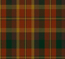 00347 Monaghan County District Tartan Fabric Print Iphone Case by Detnecs2013