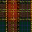 00352 Roscommon County District Tartan Fabric Print Iphone Case by Detnecs2013