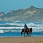 Horses and waves by donnz