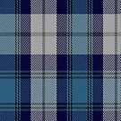00368 Arran Tartan Fabric Print Iphone Case by Detnecs2013