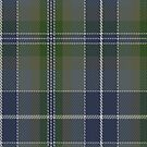 00385 Bird Family Tartan Fabric Print Iphone Case by Detnecs2013