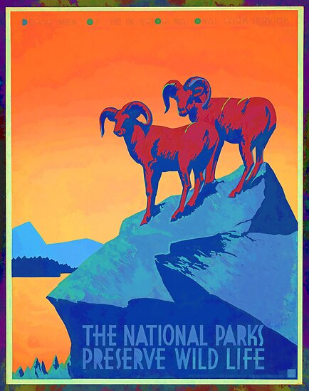 National Parks Wild Life Poster by Edward Fielding