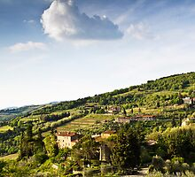 Chianti Region, Tuscany by vivsworld