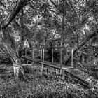 Grayscale HDR bridge by robyn70