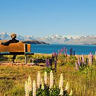 At Tekapo lake by andreisky