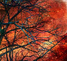 Stormy Night by Jane Neill-Hancock