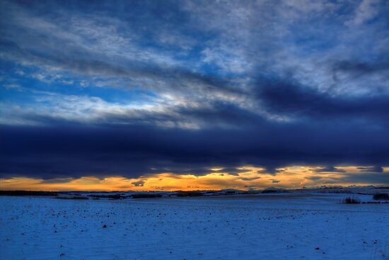 Chinook and the Prairie Bear by JamesA1