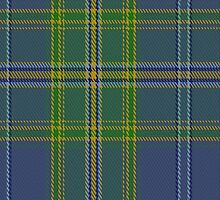 00428 All Ireland Blue District Tartan Fabric Print Iphone Case by Detnecs2013