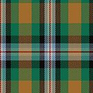00443 Ball Hunting Tartan Fabric Print Iphone Case by Detnecs2013