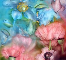 Poppies Peach & Blue by Carol  Cavalaris