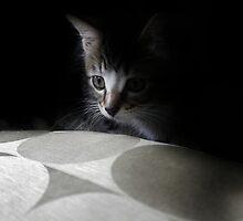 Undercover Cutie by Ladymoose