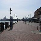 The Pier in Fells Point by Darlene Bayne