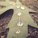 Line of Drops by lindsycarranza