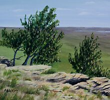 Prairie Sentinels by Michael Beckett