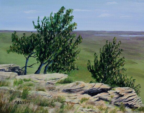 Prairie Sentinels by Michael Beckett