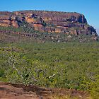 Burrunggui, Kakadu, Northern Territory by fotosic