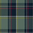 00456 Blue Blas Alba Tartan Fabric Print Iphone Case by Detnecs2013