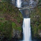 Lower Multnomah Falls by TeresaB