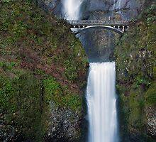 Lower Multnomah Falls by TeresaB