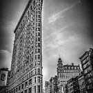 Flat Iron by Shari Mattox