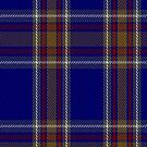 00465 Blue Rust Tartan Fabric Print Iphone Case by Detnecs2013