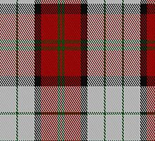 00472 Bull-Dog Sauce Tartan Fabric Print Iphone Case by Detnecs2013