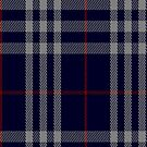 00473 Burberry Blue Tartan Fabric Print Iphone Case by Detnecs2013