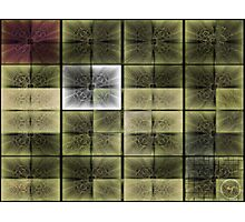 ©NS Square Ditto II Photographic Print