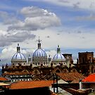 Rooftops Of Cuenca by Al Bourassa