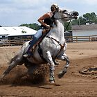 Barrel Racing by Tina Hailey