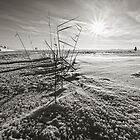 Helsinki - view on the frozen Baltic Sea by Michal Tokarczuk
