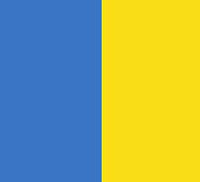 Ukraine Flag by pjwuebker
