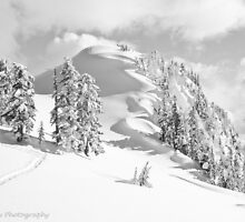 Snow Waves by Appel