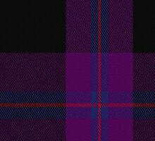 00479 Doyle Blue Tartan Fabric Print Iphone Case by Detnecs2013