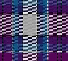 00486 Hebridean Arisaid Blue Dance Tartan Fabric Print Iphone Case by Detnecs2013