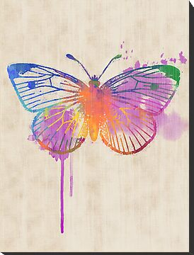 Colorful Rainbow Butterfly in Watercolour by RedPine