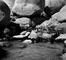 Rockpool at Whiskey Bay by Alex Fricke