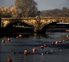 Buoys Bridge by Country  Pursuits
