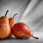 The Red Pears by Mieke Boynton