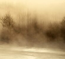 2.3.2013: Cold Morning at the River by Petri Volanen
