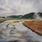 Yellowstone River, Yellowstone NP. by CourtneyAnne82